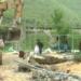 Nis shembja e ndërtimeve në Jalë